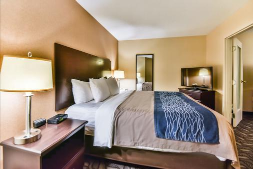 Comfort Inn & Suites Ambassador Bridge - Windsor - Bedroom