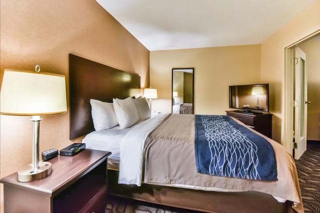 Comfort Inn & Suites Ambassador Bridge - Windsor - Makuuhuone