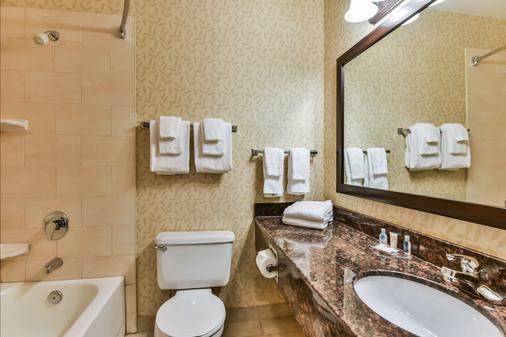 Comfort Inn & Suites Ambassador Bridge - Windsor - Bathroom