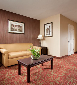 Castle Inn and Suites - Anaheim - Living room