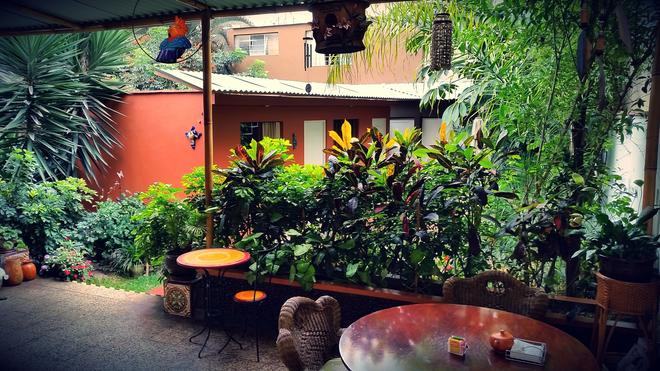 Casa Wayra Bed & Breakfast Miraflores - Λίμα - Βεράντα