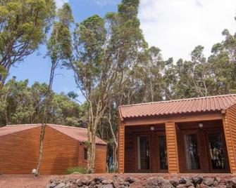 Alma do Pico - Madalena - Building