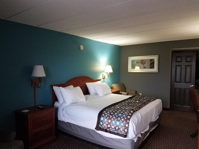 Americas Best Value Inn St. Louis Downtown - Saint Louis - Camera da letto