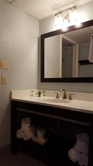 Dolphin Beach Resort - Saint Pete Beach - Bathroom
