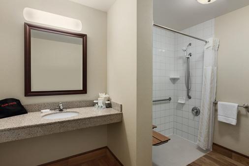 Hilton Garden Inn Wisconsin Dells - Wisconsin Dells - Bathroom