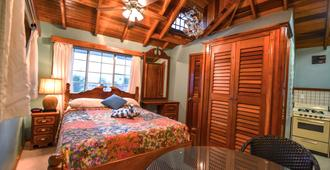 Blue Tang Inn - San Pedro Town - Bedroom