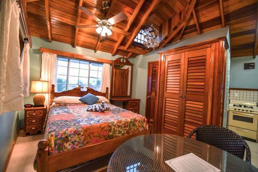 Blue Tang Inn - San Pedro Town - Phòng ngủ