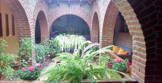 Mexsuites Casa Azul B&B - מקסיקו סיטי - פטיו