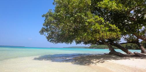 Sunrise Beach Cabanas Ecoresort - Luganville - Strand