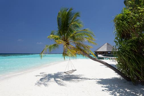 Vilamendhoo Island Resort & Spa - Vilamendhoo - Beach