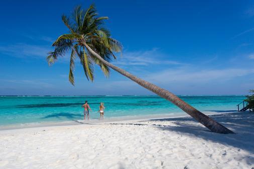 蜜月島度假村 - Meeru Island - 海灘