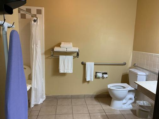 Holiday Inn Express & Suites Alice - Alice - Bathroom