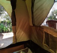 Mj Tent 1or2 Person In My Front Yard