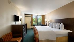 Days Inn by Wyndham Orlando Conv. Center/International Dr - Orlando - Bedroom