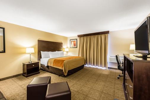 Comfort Inn Airport - Grand Rapids - Bedroom