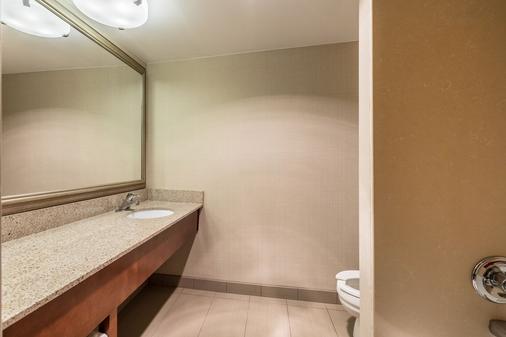 Comfort Inn Lansing - Lansing - Bathroom
