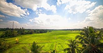 Heaven Upon Rice Fields - Anuradhapura - Outdoor view