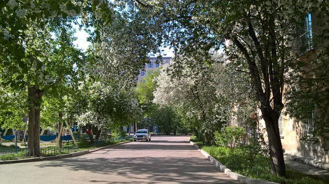 Krow Hostel - Irkutsk - Outdoors view