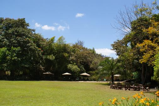 Moivaro Coffee Plantation Lodge - Arusha - Βεράντα