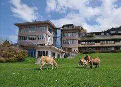 Ferien- und Familienhotel Alpina - Adelboden - Building