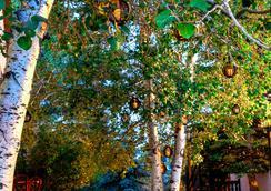 Bavarian Inn Black Hills - Custer - Näkymät ulkona