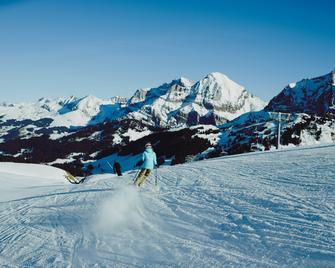 The Cambrian - Adelboden - Accommodatie extra