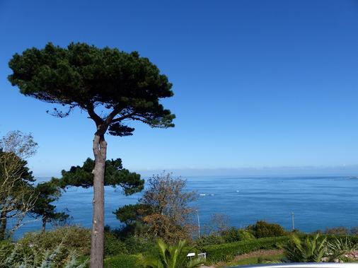 Villa Les Hydrangeas - Perros-Guirec - Outdoors view