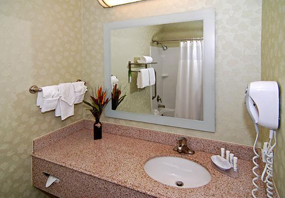SpringHill Suites by Marriott Dallas NW Hwy. at Stemmons/I-35E - Dallas - Bathroom