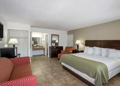 Days Inn by Wyndham St. Petersburg / Tampa Bay Area - Saint Petersburg - Bedroom
