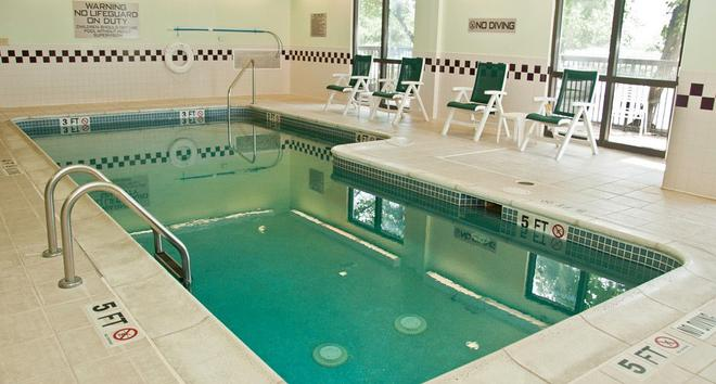 SpringHill Suites by Marriott Austin Round Rock - Round Rock - Pool