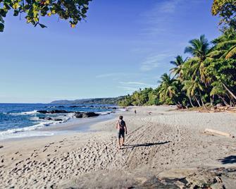 Ylang Ylang Beach Resort - Montezuma - Beach