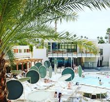 ACE 游泳俱樂部酒店 - 棕櫚泉