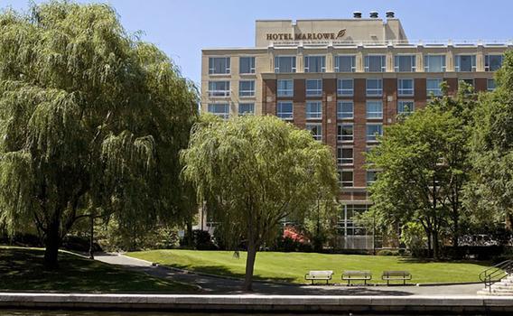 Image result for kimpton marlowe boston