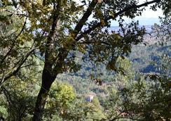 Casa do Cabeço - Tondela - Outdoors view