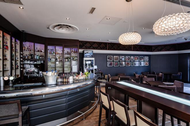 斯特拉斯堡希爾頓酒店 - 史特拉斯堡 - 史特拉斯堡 - 酒吧