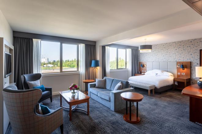 斯特拉斯堡希爾頓酒店 - 史特拉斯堡 - 史特拉斯堡 - 臥室