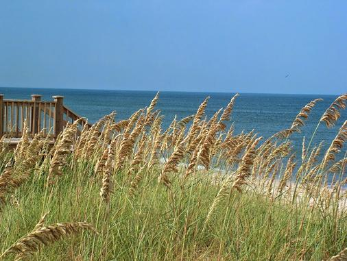 Plantation Resort - Surfside Beach - Beach