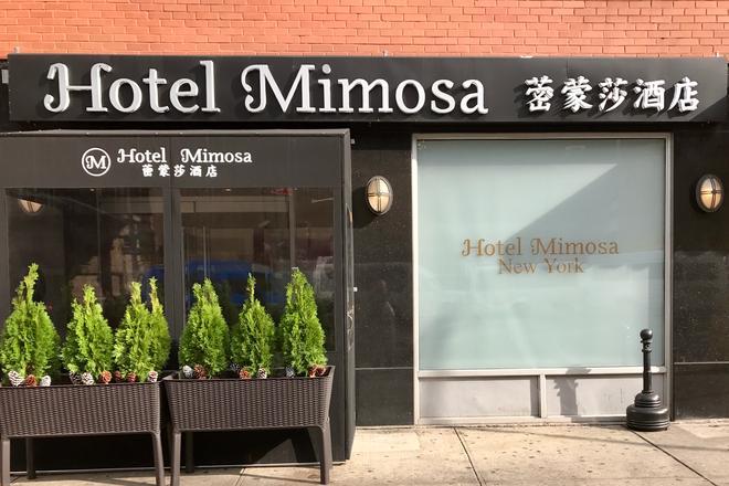 含羞草酒店 - 紐約 - 紐約 - 建築