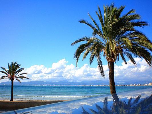 Hotel Palma Mazas - Эль-Ареналь - Пляж
