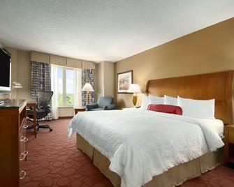 Hilton Garden Inn Chicago O'Hare Airport - Des Plaines - Schlafzimmer