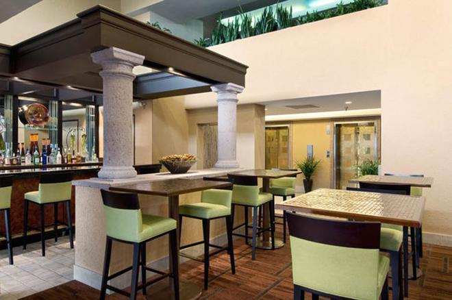 休士頓哈比機場希爾頓酒店 - 休士頓 - 休士頓 - 酒吧