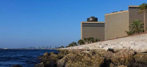 Hyatt Regency Galleria Residence Dubai - Ντουμπάι - Θέα στην ύπαιθρο