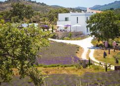 Quinta Das Lavandas - Castelo de Vide - Building