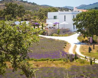 Quinta Das Lavandas - Castelo de Vide - Gebäude