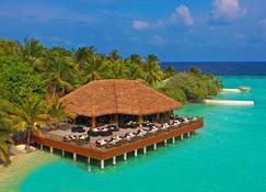 Eriyadu Island Resort - Eriyadu - Bar