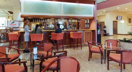 墨爾本亞當灣景酒店 - 墨爾本 - 墨爾本 - 酒吧