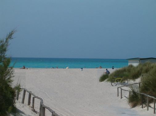 Le Biricoccole - Vada - Beach