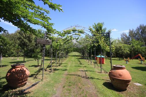 Le Biricoccole - Vada - Outdoors view