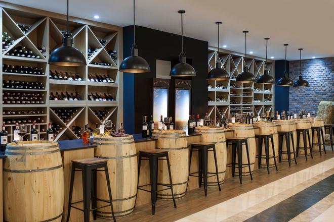 DoubleTree by Hilton Antalya-Kemer - Kemer - Bar