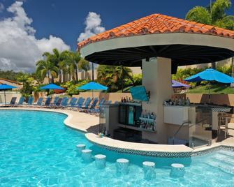 Park Royal Homestay Club Cala Puerto Rico - Humacao - Pool
